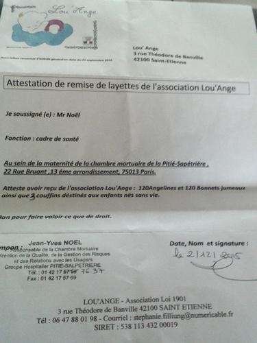 Pitié Salpetrière livraison 2015